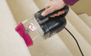 Bissell Pet Hair Eraser (33A1B)